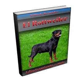 Libro el Rottweiler adiestramiento y más