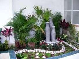 Servicio de jardinería y huerta en casa