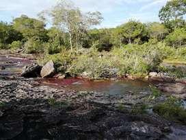 Finca ubicada en el municipio de la macarena meta de 1800 hectáreas aproximadamente colinda  con caño cristales