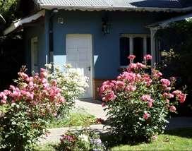 Alquiler  Temporario  Departamento  San Martín de los Andes