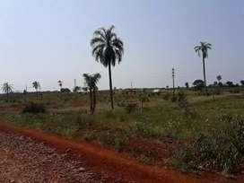 Terrenos sobre ruta 14