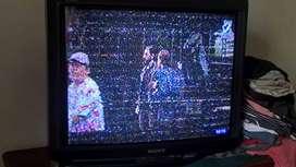 Tv Sony Trinitron 29 Pulgadas con Control Remoto
