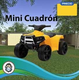 Mini Cuadron