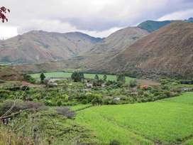 En Venta 1.5 hectáreas planas con casa y huertos