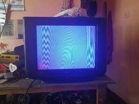 Vendo un tv 21 simply