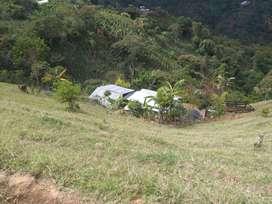 Finca Santa Fe de Antioquia Vereda Altavista a orilla de carretera