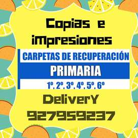CARTILLA DE  RECUPERACION DE APRENDO EN. CASA