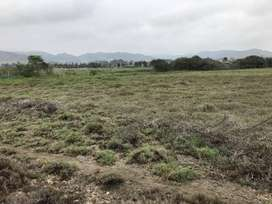 Ocasión - Terreno con Habilitación Urbana Aprobada - Al Costado de Bujama Lacus