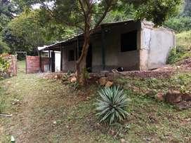 finca localidad villa colombia