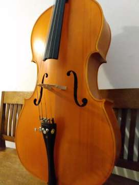 Cello 4/4, vendo permuto
