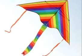 Cometa Papagayo Elevar Arco Iris Lgbt Gay + Cuerda Gratis 1a