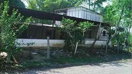 venpermuto finca fruticola-ganadera de 63 hectareas