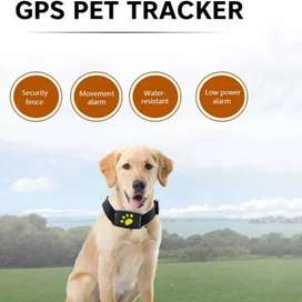 GPS localizador en tiempo real para mascotas!
