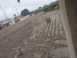 Se remata terreno de 3123.18 M2 en Puente Piedra