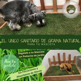 Sanitario Ecológico para Mascotas POTTY PET