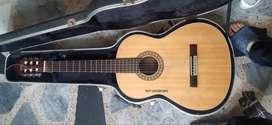 Guitarra Clasica De Concierto Hecha En Japon, (serena Sg 4)