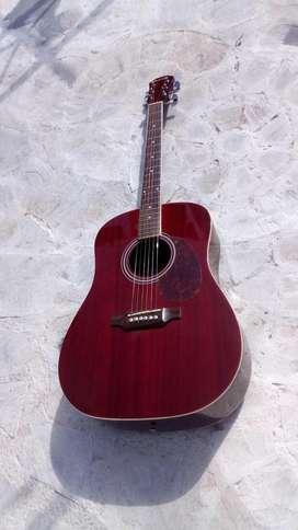 Guitarra acustica burmeisters