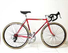Bicicleta de Ruta Clásica (pogliaghi italcorse)