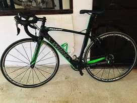 Bicicleta carbono de Ruta