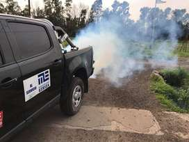 Fumigaciones para ratas y lauchas especialistas consultenos