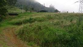 Vendo o permuto Casa Lote Via Bogota  La Mesa, recibo camioneta