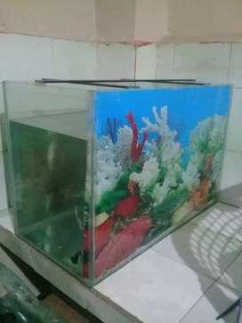 Vendo acuario grande