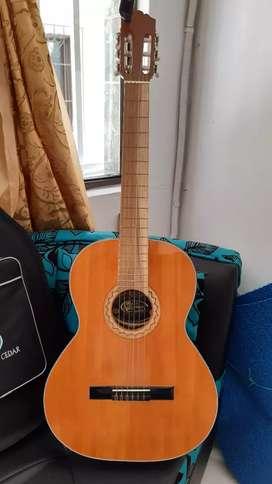 Guitarra acústica de estudio, afinador y estuche duro