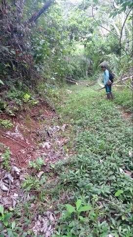 Imbatible venta de terreno en Chanchamayo