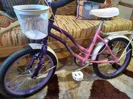Bicicleta niña - Rodado 20