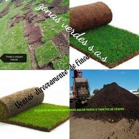 JARDINERÍA ZONAS VERDES  Césped natural y tierra negra Grama, pasto, kikuyo,