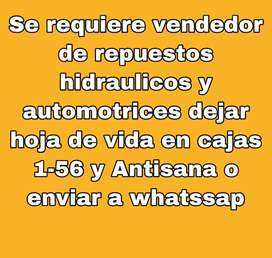 Vendedor para local de repuestos hidraulicos y automotrices