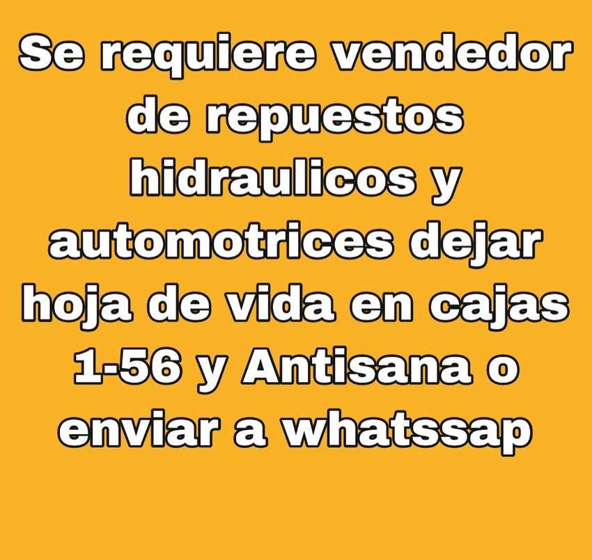Vendedor para local de repuestos hidraulicos y automotrices 0