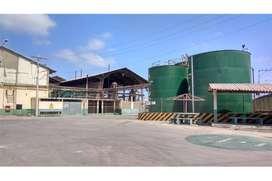 fábrica extractora de Aceites finos de venta manta