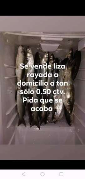 Abastedor de pescado