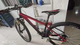 Bicicleta MTB rin 29 en carbono