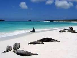 Tour diario Isla Bartolome