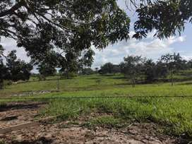 Se vende finca ganadera San Jose del  Guaviare