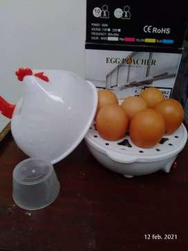 Gallina que hierven 7 huevos a su gusto