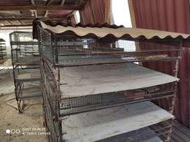 Jaula de Cuyes (modular)