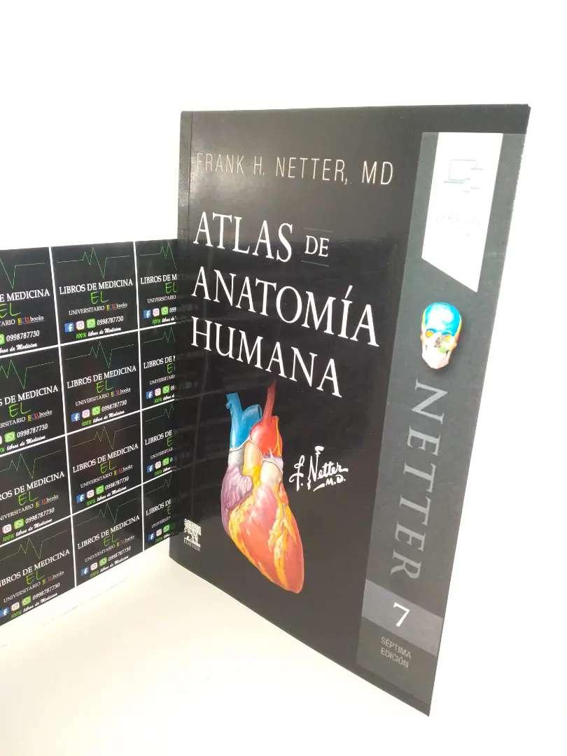 Atlas de Anatomia Netter 7ma edicion 0