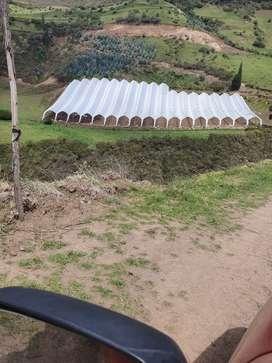 Se construye todo tipos de invernaderos
