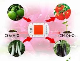 Luz UV cultivo Plantas 110v 50w Espectro flores