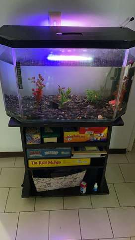 Acuario para peces hornamentales