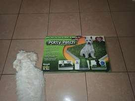 Baño para perro (Potty Patch)