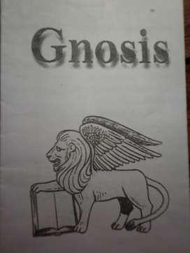Curso de Gnosis. La sabiduría del ser interno.