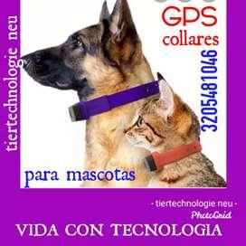 Collares con GPS.para mascotas.