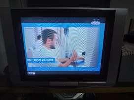 Tv 29 Panasonic pantalla plana