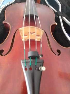 Clases virtuales de música, violín y viola