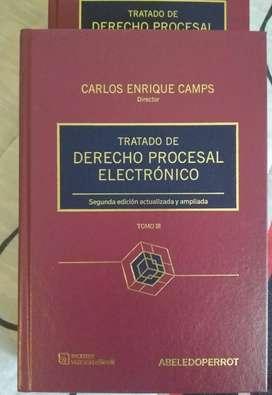Tratado de derecho procesal electrónico