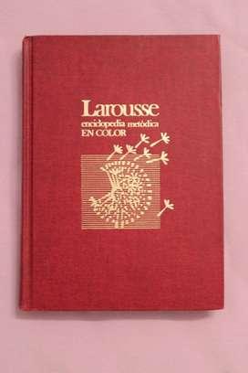 ENCICLOPEDIA METÓDICA LAROUSSE EN COLOR TOMO 1, 1990, EXCELENTE ESTADO